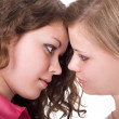 Portrait of the two beauty young women. — Stock Photo #1105749