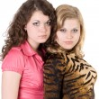 Stock Photo: Two sexy beauty young women. Isolated 3