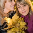 Portrait of the two young beauty blonde — Stock Photo