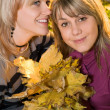 Portrait of the two young beauty blonde — Stock Photo #1160050
