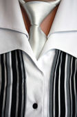 Female strict blouse with a necktie — Stock Photo