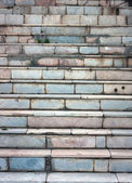 Old steps by a large plan — 图库照片