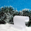 Stock Photo: Falling snow on scroll.