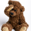 Beautiful toy , bear Teddy. — Stock Photo #1517460