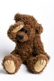 Beautiful toy , bear Teddy. — Stock Photo
