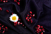 Corns pomegranate flowers on black silk — Stock Photo
