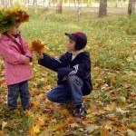 Autumn flowers bouquet — Stock Photo