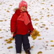 Little girl with autumn leaves at winter — Stock Photo
