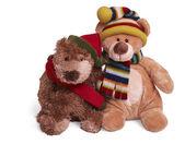 Soft teddy bear couple — Stock Photo