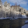 The wood river in the winter - Stock Photo