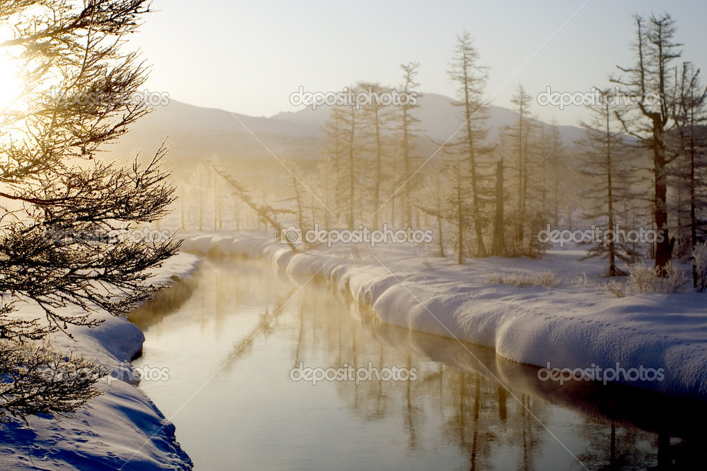The wood river in the morning stock image