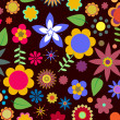 Funky flowers - Stock Photo