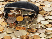 Purse with coins and dollars — Stock Photo