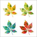 Colorful autumn leafs. — Stock Photo #1357414
