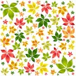 Colorful autumn leafs. — Stock Vector #1357412