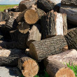Royalty-Free Stock Photo: Piled firewood