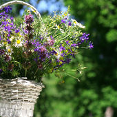 Bouquet of meadow flowers in a basket — Stock Photo