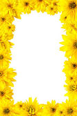 Frame with yellow flowers — Stock Photo