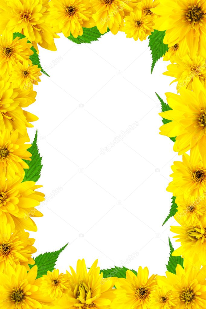 spring flower page borders