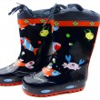 Blue Galoshes — Stock Photo #1384346