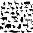 Collection of animal silhouettes. Vector — Stok Vektör