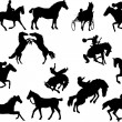 Fourteen horse silhouettes. Vector illus - Stock Vector