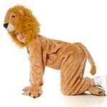 el muchacho en un disfraz de León — Foto de Stock