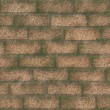 Stock Photo: Old brickwork