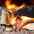 Fire in stove — Stock Photo