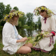 Stock Photo: Two girls is twist flowers into wreath