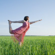Beautiful girl doing yoga at nature — Stock Photo #1158903