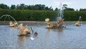 Fountain at Peterhof — Stock Photo