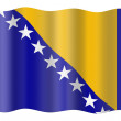 Bosnia and Herzegovina flag — Stock Photo #1196488