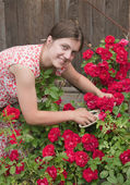 Girl florists working in the garde — Stock Photo