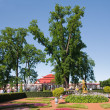 Down park at Peterhof, Russia — Stock Photo #2134655