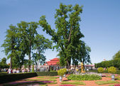 Down park at Peterhof, Russia — Stock Photo