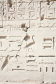Hieroglyphic relief — Stock Photo