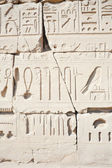 Wall in the Karnak Temple at Luxor — ストック写真