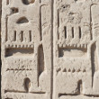 Hieroglyphic relief — Stock Photo #2140080