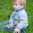 Little boy sitting on grass in a park - Stock Photo