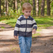 Little boy goes on the forest - Stock Photo