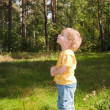 Little boy in forest - Stock Photo