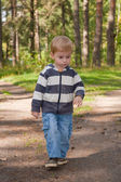 Little boy goes on the forest — Stock Photo
