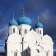 Stock Photo: House of BogolyubskayTheotokos