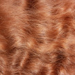 Red hair textured — Stock Photo