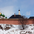 Saviour-Euthimiev monastery — Stock Photo
