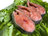 Freshness red fish — Stock Photo