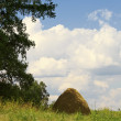 Haystack against a green grass and the b — Stock Photo