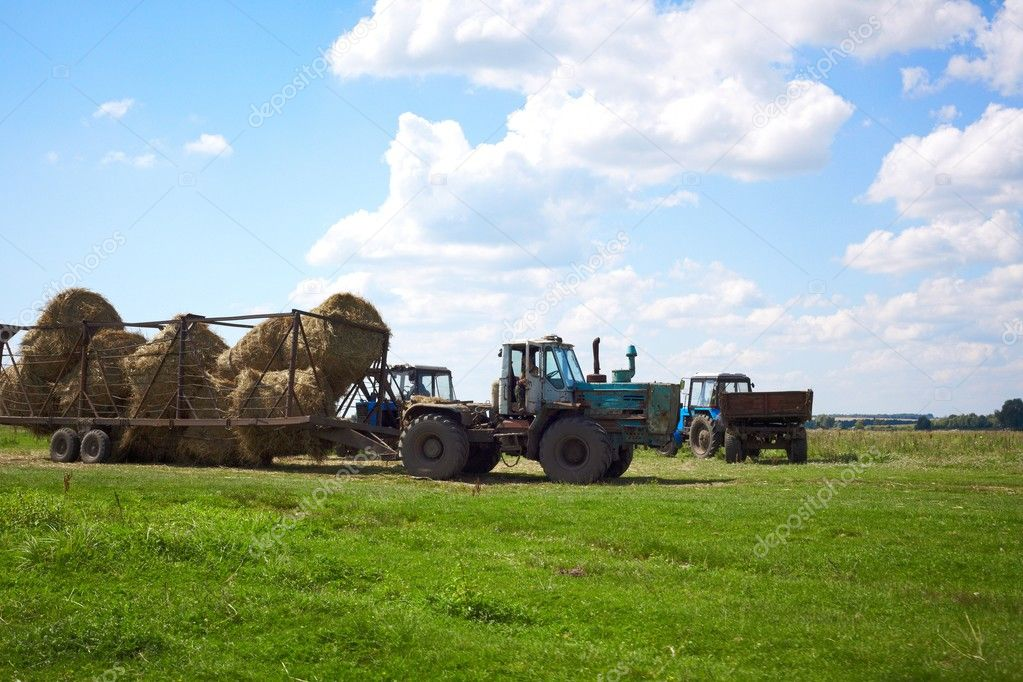 Tractor in the field harvests   Stock Photo #2597375
