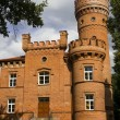 Castle Raudone - Stock Photo